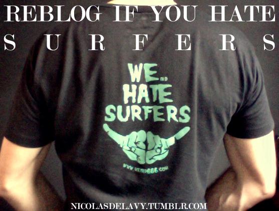 Camiseta-We-hate-surfers